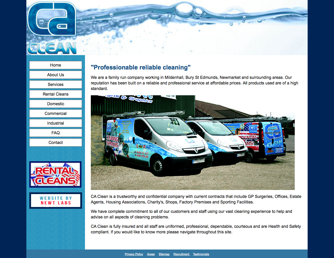 cleaning website screenshot
