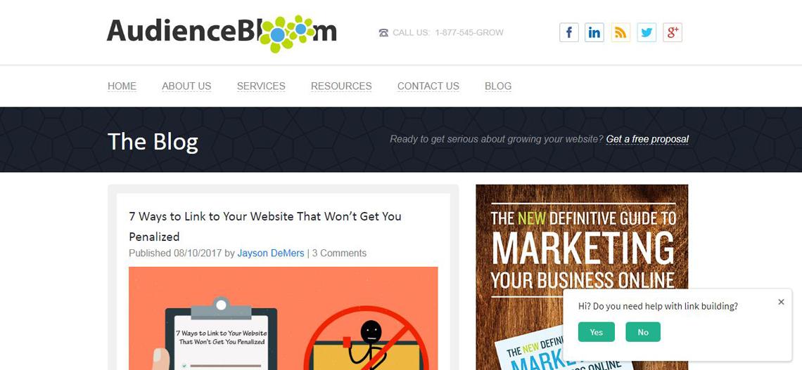 audience bloom website