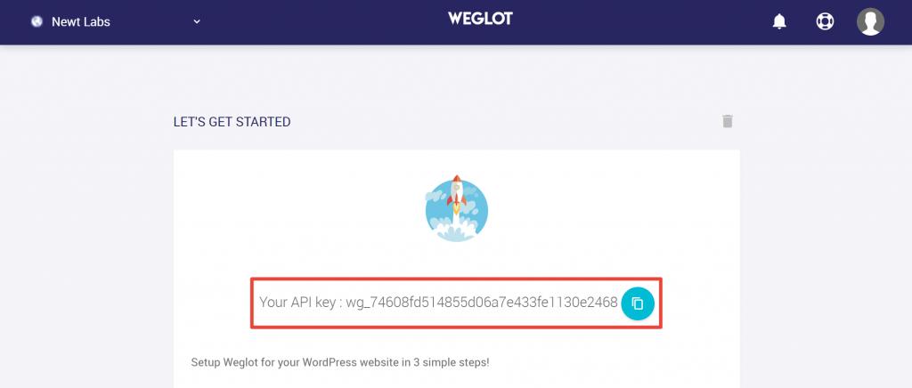wordpress localisation plugin api key